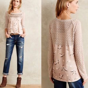 🌸Anthropologie🌸 Aves Lace-Trimmed Pullover